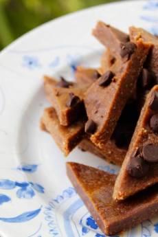 Healthy Vegan Fudge Bites